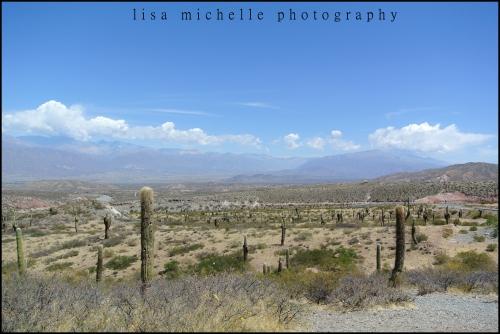 cachi landscape