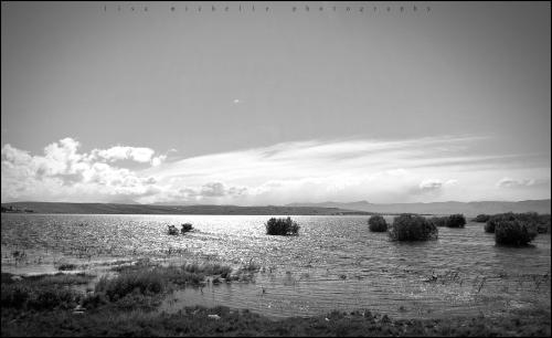 Week 16 - Lago Argentino - El Calafate, Argentina