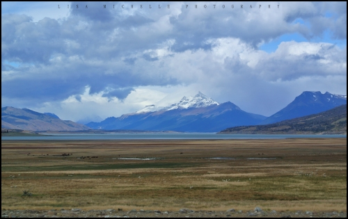 Scenery - Puerto Moreno Tour